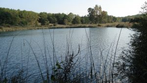 Lac de Chailloux